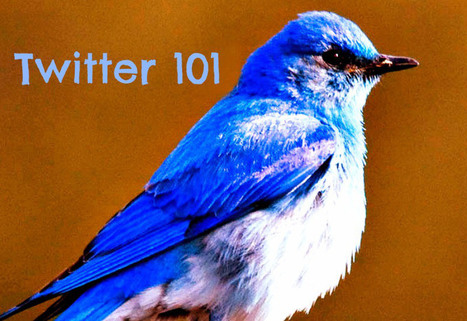 Twitter 101: Links, Tips and More | Social Media: Don't Hate the Hashtag | Scoop.it