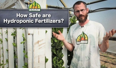 Comment on Food Safety and Hydroponics: Conventional vs. Organic Fertilizers by Food Safety & Hydroponics Conventional vs. Organic | Organic Social Media | Aquaponics~Aquaculture~Fish~Food | Scoop.it