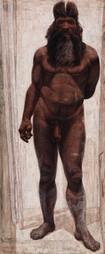 Cuatro grandes etapas marcaron la evolución del cuerpo humano / Noticias / SINC | Educacion, ecologia y TIC | Scoop.it