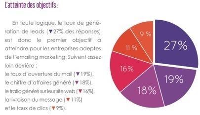 [Livre Blanc] Email marketing BtoB : regard d'expert, tendances et enquête | Entrepreneurs du Web | Scoop.it