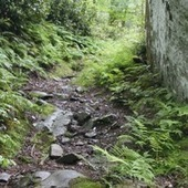 Ancient Cherokee trail system restored for today's generation<br/> | Nooga.com | Archaeology News | Scoop.it