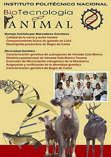 Libro. BioTecnología -Genómica- Animal {Animal -Genomics- Biotechnology}: ADVANCES AND PERSPECTIVES OF GENOMICS BIOTECHNOLOGY APPLIED TO LIVESTOCK PRODUCTION IN MEXICO   All About Food   Scoop.it