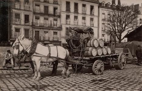 Nantes: Des centaines de photos des années 1900 oubliées reprennent vie sur Twitter | Nos Racines | Scoop.it