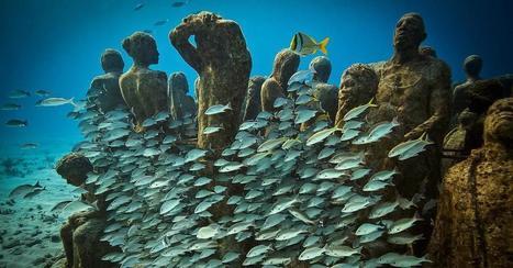 An underwater art museum, teeming with life   WholeEdu   Scoop.it