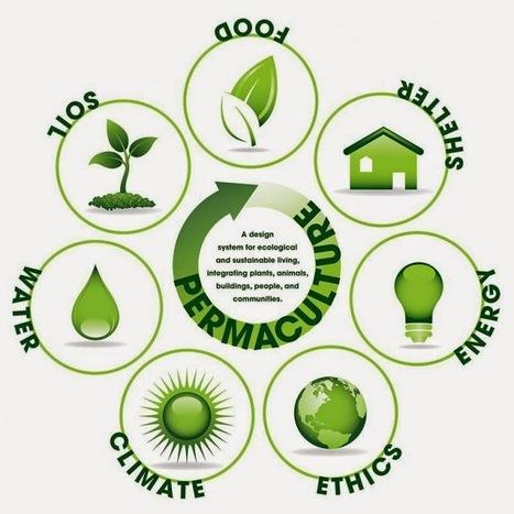 Permaculture: Les 12 fruits et légumes contenant le plus de pesticides | Kilométrage alimentaire | Scoop.it