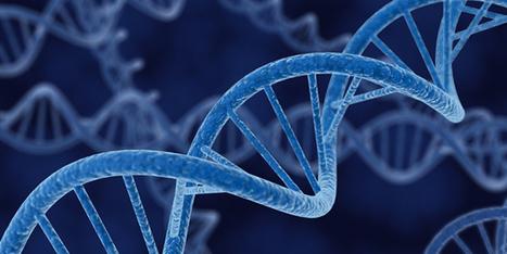 Biologists Create Cells With 6 DNA Letters, Instead of Just 4   Le futur est (déjà) là #nbic   Scoop.it
