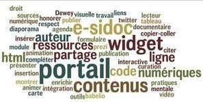 Répertoire des principales insertions dans un portail documentaire comme E-sidoc : exemples et modes d'emploi   Apprivoisons Esidoc   Scoop.it