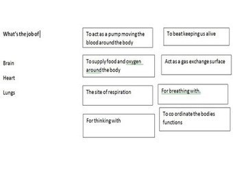 Sharing Pedagogical Purposes: Hinge Questions. A Clarification. | Effective Questioning in the Classroom | Scoop.it