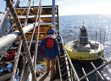 Experimental wave-power buoy survives winter in Monterey Bay | Tech innovation | Scoop.it