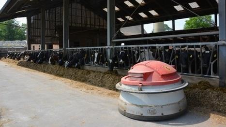 Exploitation laitière allemande - 320 vaches dans une stabulation ... - Web-agri | BTPL | Scoop.it