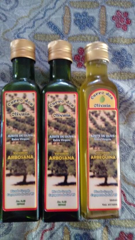 Consumo de azeites  no Brasil | olive table on Brazil | Scoop.it