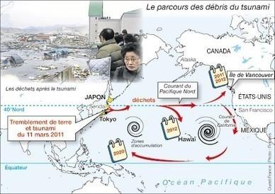 Les déchets du tsunami ont traversé le Pacifique - Ouest-France | Japan Tsunami | Scoop.it