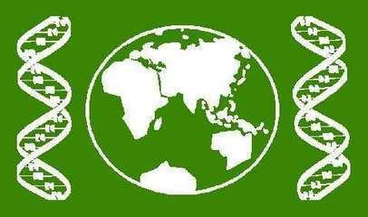 Animaciones de tectónica global   Biología y Geología   Scoop.it