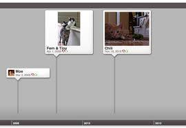 Dipity - Find, Create, and Embed Interactive Timelines | IKT i skolan | Scoop.it