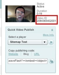 Creating Video Sitemaps for each Video Hosting Platform | distilled | Video Indexing | Scoop.it