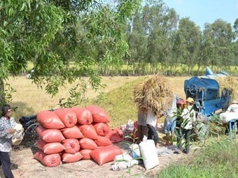 An ninh lương thực là vấn đề sống còn - An ninh luong thuc la van de song con - Kinh tế Nông thôn (Food Security is Vital) | DuPont ASEAN | Scoop.it
