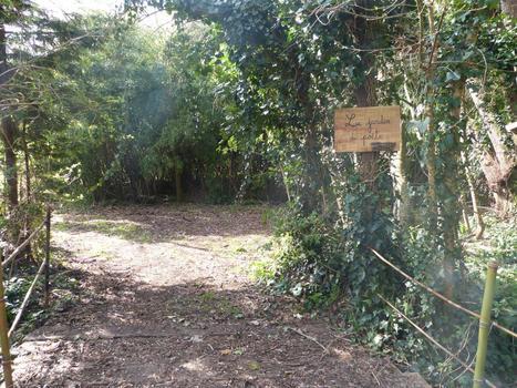 Jardin du poète à Meschers | Les colocs du jardin | Scoop.it