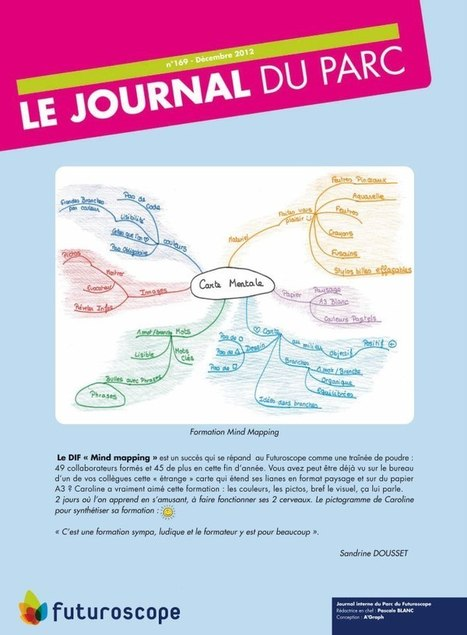 Le Mind Mapping et le DIF | Medic'All Maps | Scoop.it