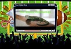 Gecko Emmentaler e | Health and Wellness | Scoop.it