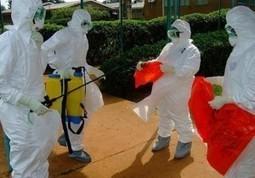 Le secrétaire général à la Santé publique rassure : Pas d'épidémie d'Ebola à Kinshasa | CONGOPOSITIF | Scoop.it