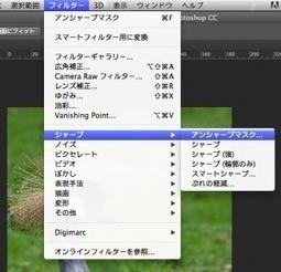 Photoshop シャープの話 - Adobe Blogs | めもめも2nd | Scoop.it