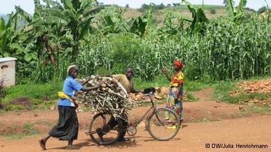 Rwanda's green innovation Strategy | AREA News Digest | Scoop.it