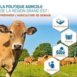 Dévoilement de la politique agricole régionale du Grand Est et premiers plans d'actions - Région Grand Est | L'actu agricole dans la Marne et la région | Scoop.it
