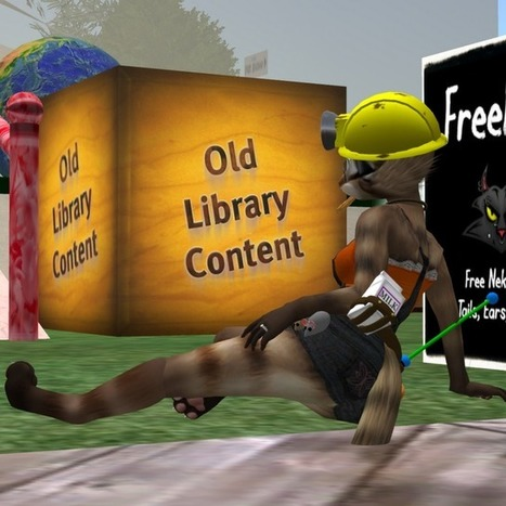 The Poultry Report: Defaults | Second LIfe Good Stuff | Scoop.it