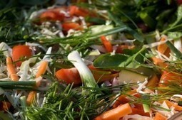 13 Resolutions to Change the Food System in 2013 | Cornucopia Institute | The Barley Mow | Scoop.it
