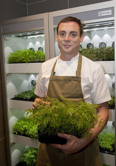 Microherb mania: from dainty decoration to ingredient heavyweight   Vertical Farm - Food Factory   Scoop.it