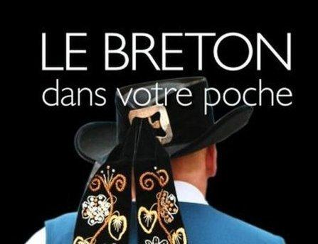 Breton.  Larousse retire de la vente son dictionnaire truffé de fautes   MétaTraduction   Scoop.it