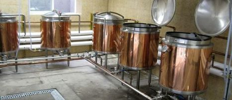 The Innovation Lessons of Craft Beer - | Evan's homebrewing | Scoop.it