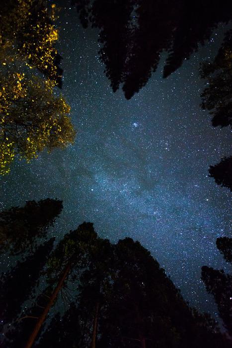 Exercice photo - Photographier un ciel étoilé - Focus Numérique | Métiers de l'image & apprentissage numérique | Scoop.it