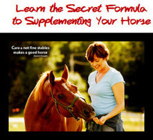 12 Ingredients you NEVER Want To See On ANY Horse Supplement Label ... EVER | Horse Care | Scoop.it