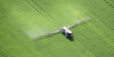 Les coûts cachés exorbitants des pesticides | Planete DDurable | Scoop.it