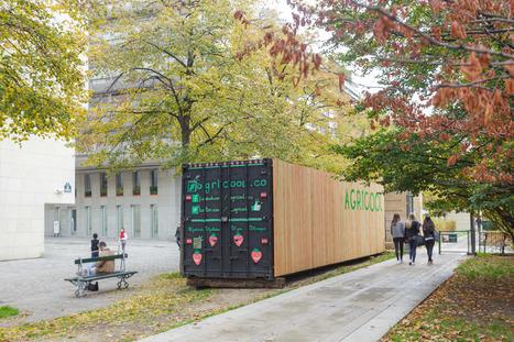 Agriculture urbaine : Des fraises en containers à Paris | ECOLOGIE BIODIVERSITE PAYSAGE | Scoop.it