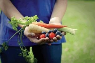 Feed Nova Scotia grows truck fleet in effort to reduce food waste | Canadian Grocer | NovaScotia News | Scoop.it