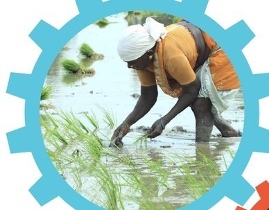 Solutions Journalism Network: Food Security Guidebook | The Same Heart - Child Labor | Scoop.it
