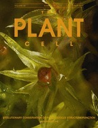 Alternative Splicing at the Intersection of Biological Timing, Development, and Stress Responses | Plant Gene Seeker -PGS | Scoop.it