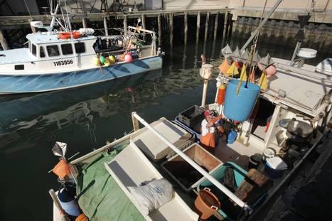 NOAA proposes reopening some offshore fishing zones - Press Herald | Fish Habitat | Scoop.it
