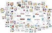 B2B: Le Blog: Influence des reseaux sociaux sur les intentions d'achats infographie   Digital Marketing   Scoop.it