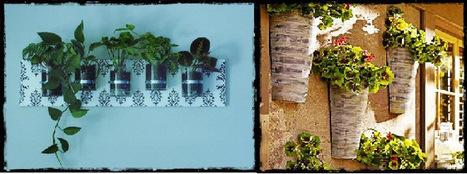 Different Ways To Grow a Vertical Garden Part 1 | Garden and Outdoor Australia 2 | Scoop.it