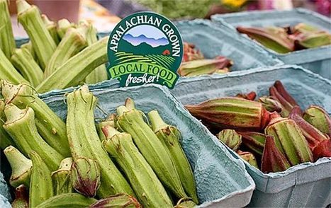 Appalachia Grows a New Local Food Economy | Searching for Safe Foods | Scoop.it