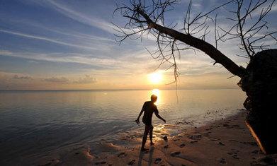 Sun Catcher by Sheila Rance – review | Read Ye, Read Ye | Scoop.it