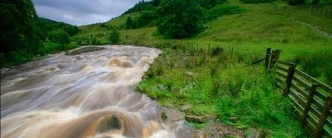 Flooding: key measures for a resilient and better future | The Wildlife Trusts | Exact-Communications | Scoop.it