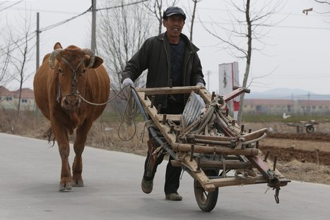 China looks abroad for greener pastures | Mrs. Watson's Class | Scoop.it