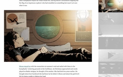 Under the Hood of 'Chasing Bayla,' an Immersive Story From the Boston Globe   Transmedia: Storytelling for the Digital Age   Scoop.it