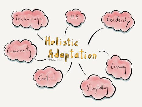 Holistic Adaptation: the Mindset of Future Organisations | Network Leadership | Scoop.it