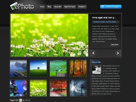 The Most Innovative WordPress Themes of 2011 | Evernote Tips & News | Scoop.it