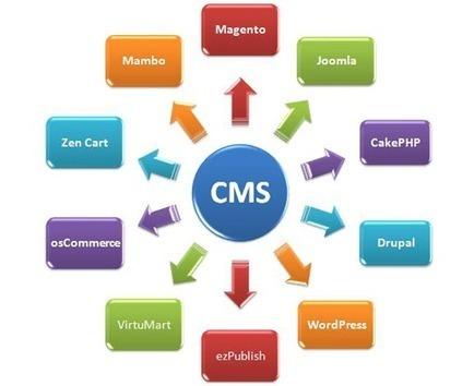 Content Management Solutions, Content Management Solutions India | Bizz Digital Marketing | Scoop.it